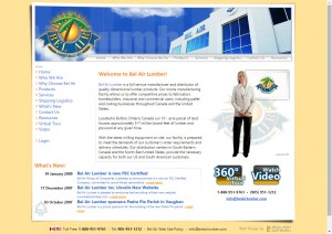 Corporate website homepage with interactive host video